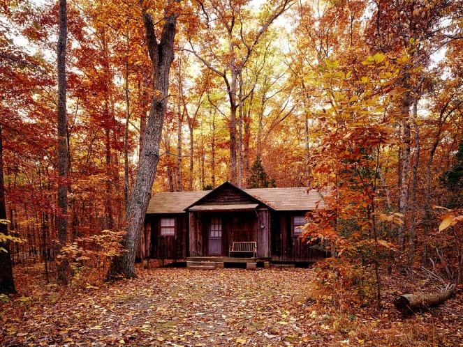 maison-bois-automne